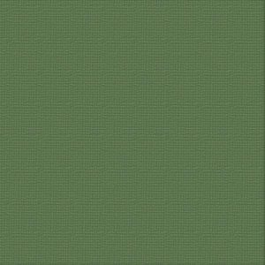 cardstock-cypress-pine