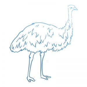 sunburnt-country-stamp-emu