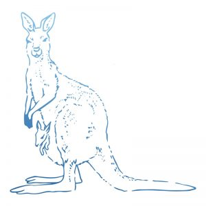 sunburnt-country-stamp-kangaroo