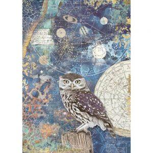 DFSA4389-stamperia-A4-rice-cosmos-owl