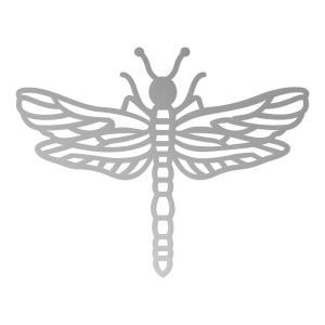 CO727393_PP_Dragonfly