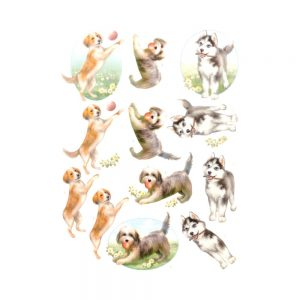SB10377_3D_Diecut_Sheet_Dogs_Life_Playing_Dogs