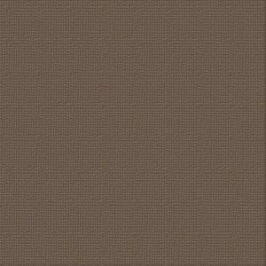cardstock-chocolate