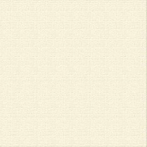 cardstock-ivory
