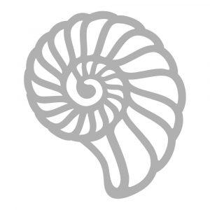 CO728326 Mini Die Swirling Shell