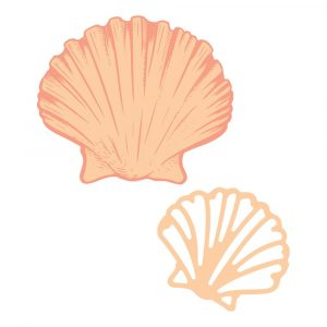 CO728330 Stamp and Die _ Flat Seashell