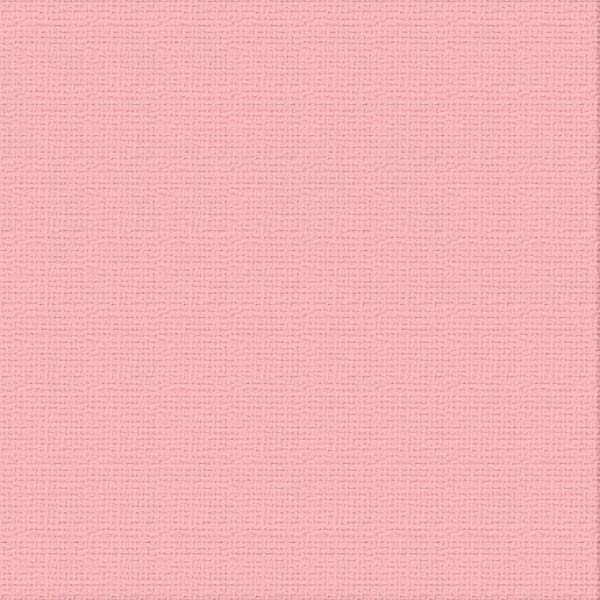 ULT200078-Carnation